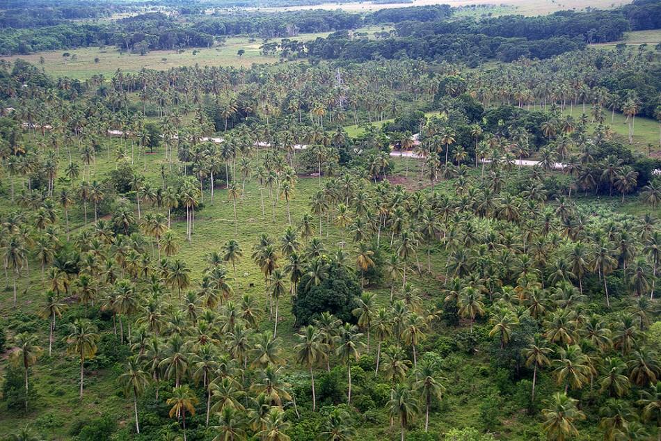 Resultado de imagen para Reserva Científica Loma Quita Espuela