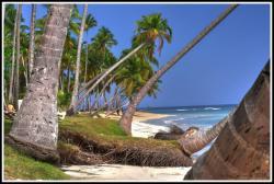 Playa Bonita, République Dominicaine