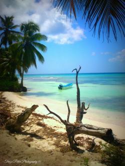 Isla Saona, Costa Este