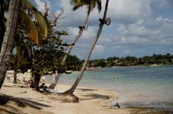 Playa Minitas Beach, Dominican Republic