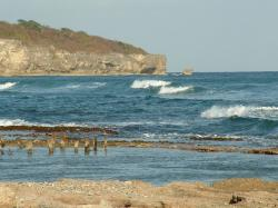 Playa Palenque Beach