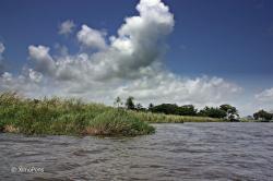 Reserva Científica de las lagunas Redonda y Limón
