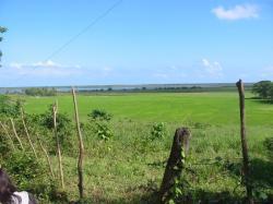 Reserva científica de las lagunas Redonda y Limón, Dominican Republic