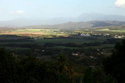 Yaguate